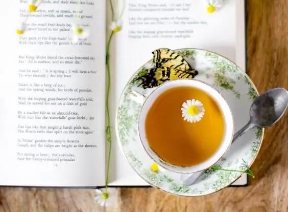 33 полезни причини да пием чай