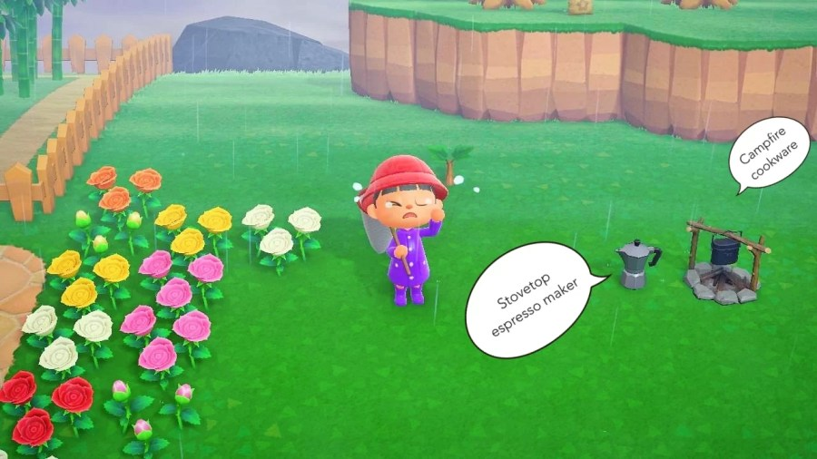 Animal Crossing Ding 0606 5
