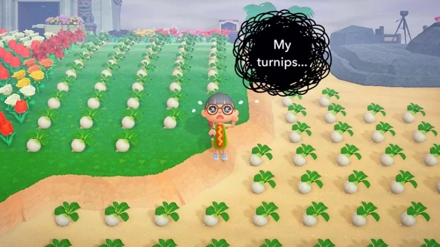 Animal Crossing Ding 0706 2