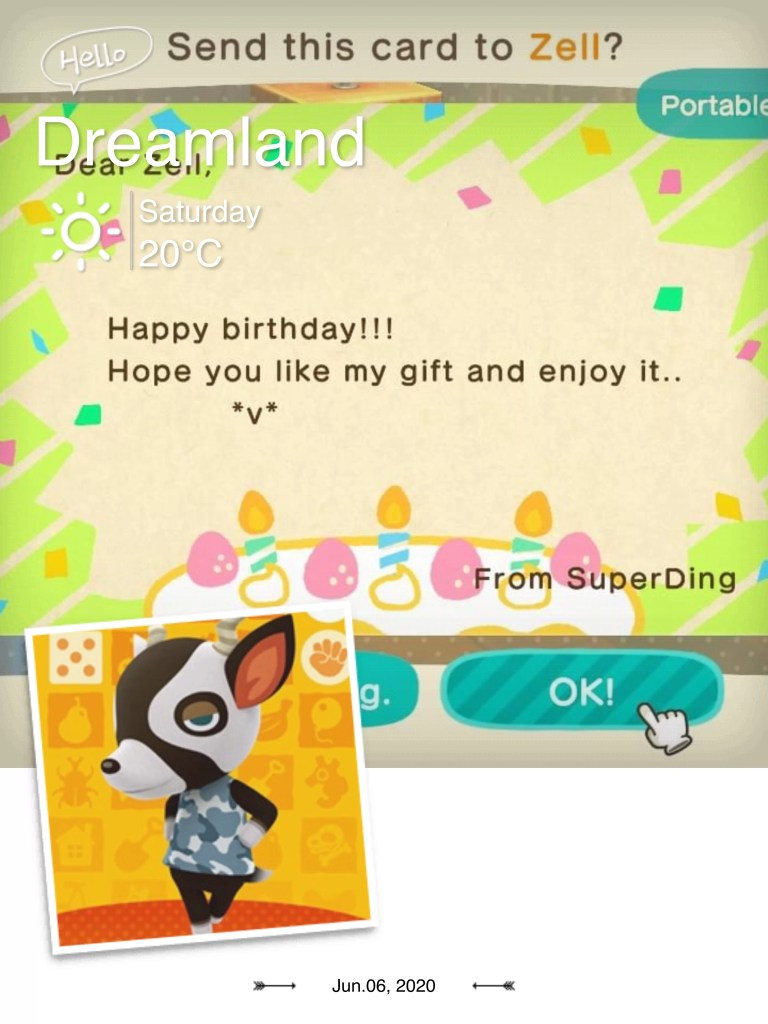 Animal Crossing Ding 0706 8