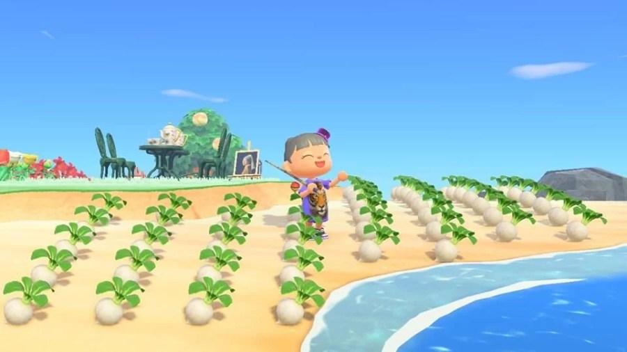 Animal Crossing Ding 0806 9