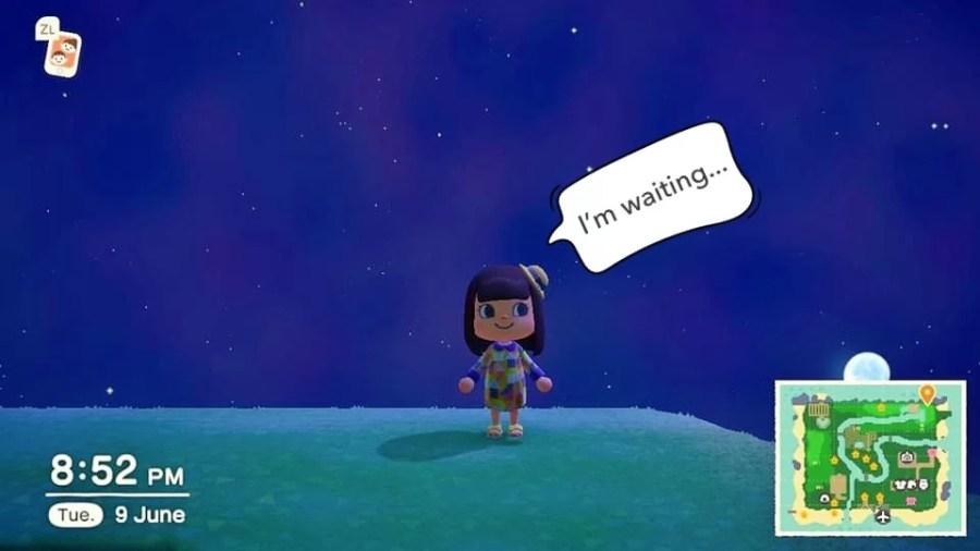 Animal Crossing Ding 1006 3