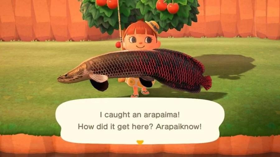 Animal Crossing Ding 2606 9
