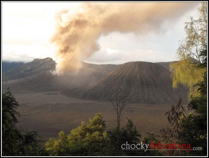 bromo wisata erupsi (3)
