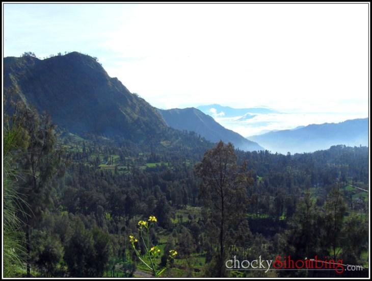 bromo wisata erupsi (6)