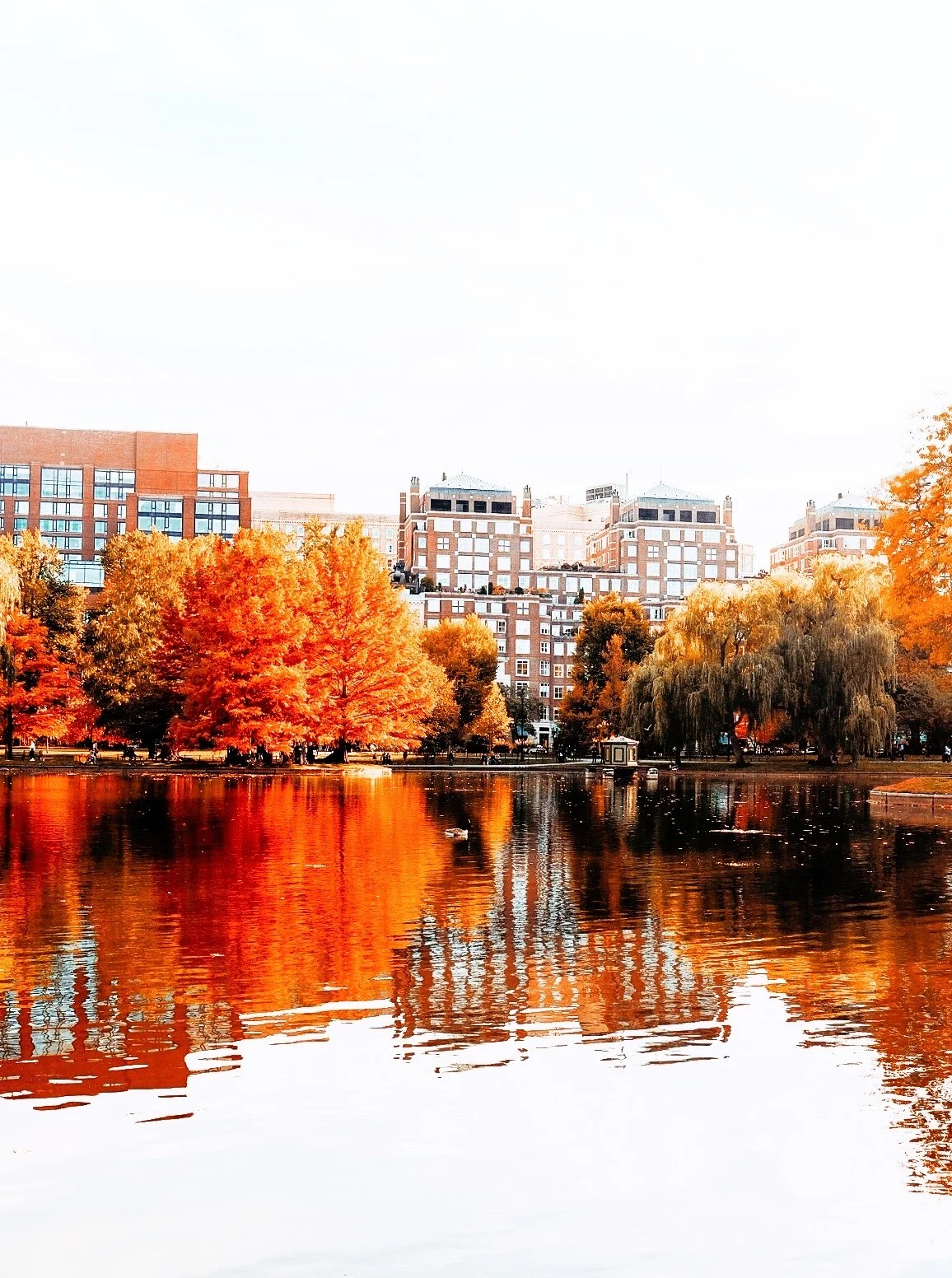 Boston Massachusetts in the Fall