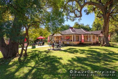 Tearoom Views, Chocolate Drops, Yanchep - © MADCAT Photography 2014