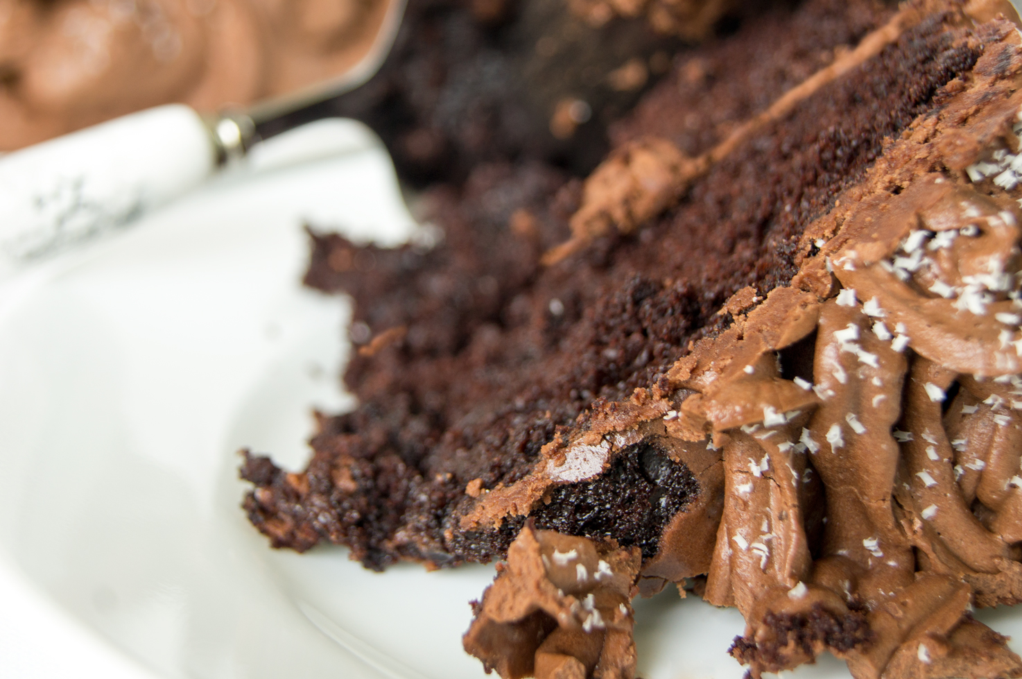 Two-Layer Chocolate Cake with Whipped Cocoa Buttercream
