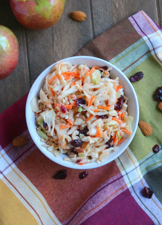 apple-cranberry-and-walnut-coleslaw-copy