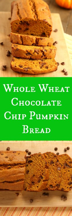 whole-wheat-chocolate-chip-pumpkin-bread