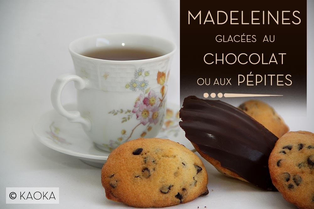 Madeleines Glac 233 Es Au Chocolat Ou Aux P 233 Pites Les