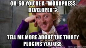 WordPress programator