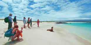 Galapagos low cost: Complete Guide to Traveling by your own on a low Budget