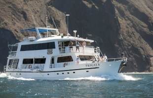 Fragata Yacht Galapagos Cruise