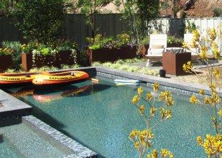 pool-after-la-jolla-garden-makeover