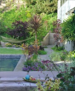 Plants in dark colors give a dreamy feeling to the garden