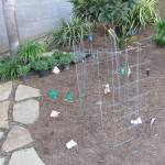 fountain mock-up with wire mesh