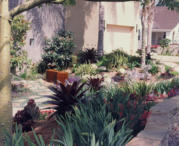 These dark bromeliads provide contrast to the lightness of the house's walls, strappy irises play off of the low horizontal stone wall, and palms throw their interesting shadows on the walls.