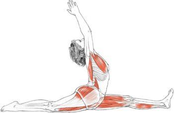 Vinyasa Yoga Class, lesson plan Class 12: Split / Hanumanasana