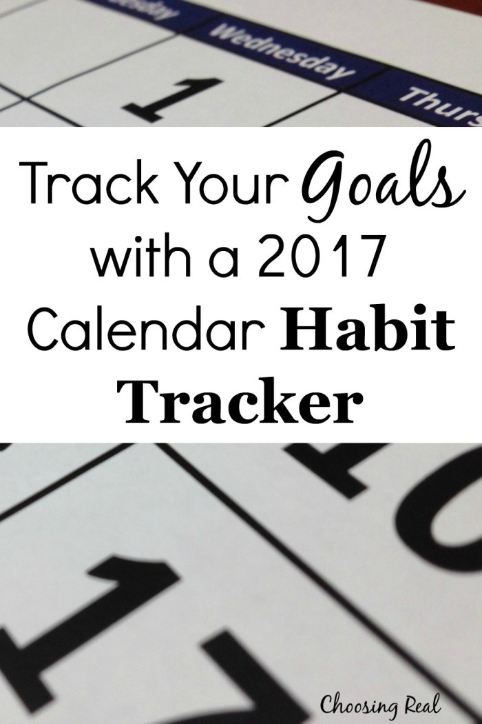 Using a 2017 calendar habit tracker can help you meet your daily goals. Simply print out this 1-page calendar & mark off each day you meet your goal.