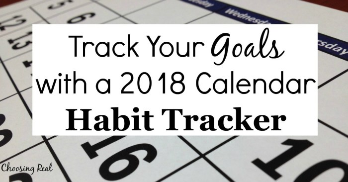 Using this 2018 habit tracker can help you meet your daily goals this year. Simply print the 1-page calendar and mark off each day you meet your daily goal.