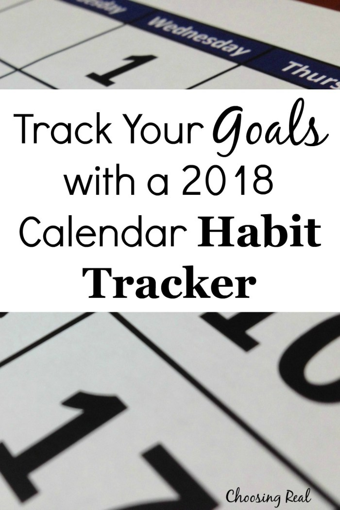 Using this 2018 habit tracker can help you meet your daily goals this year. Simply print the1-page calendar and mark off each day you meet your daily goal.