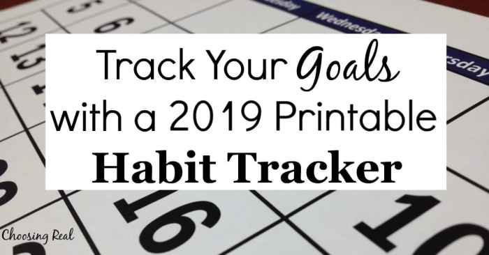 Using this 2019 habit tracker can help you meet your daily goals this year. Simply print the 1-page calendar and mark off each day you meet your daily goal.