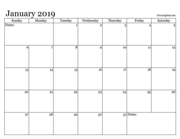 I use these 2019 monthly calendar pages to quickly see each month at a glance for planning future activities.