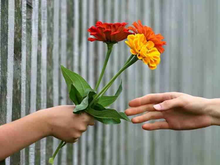 hands giving bouquet of flowers