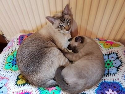 Monty & Agatha