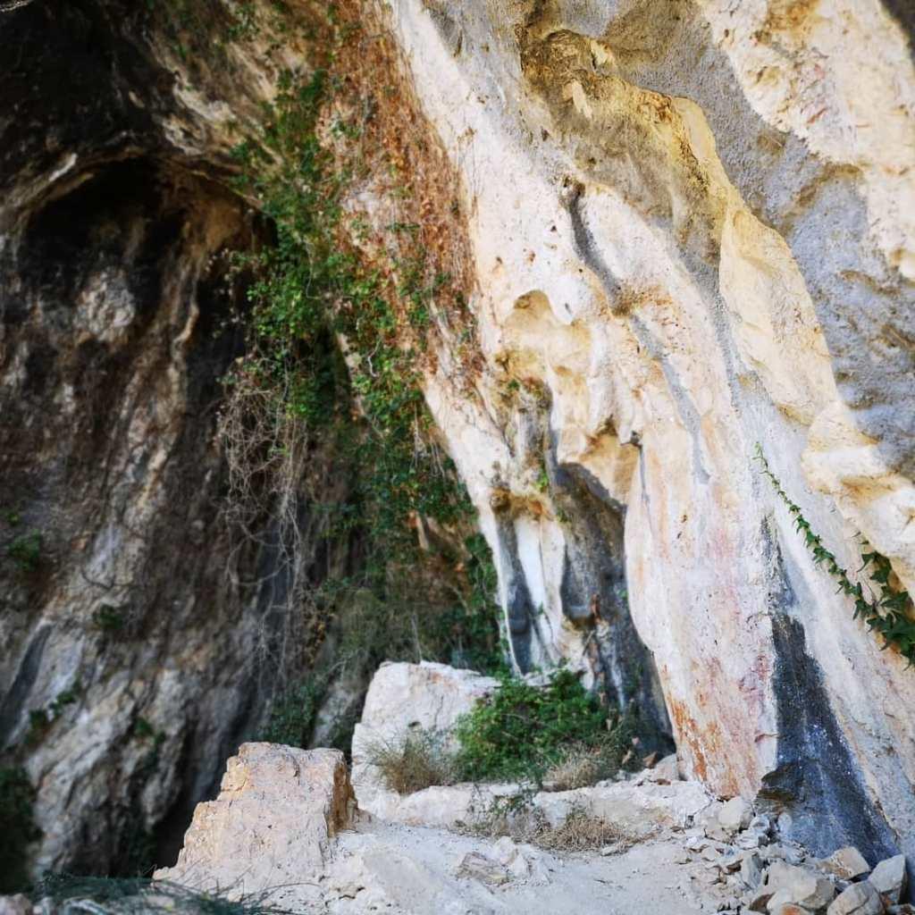 Ściany Smoczej Jaskini miejscami porasta roślnność