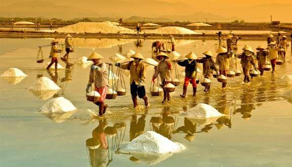 Đồng muối Sa Huỳnh - Quảng Ngải