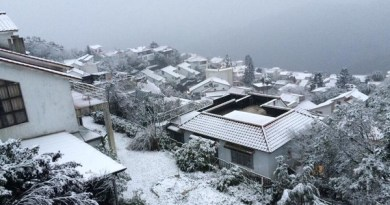2016-01-24 Snow in Xindian