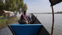 Boat captain to Kanazi Island and hippo viewing...