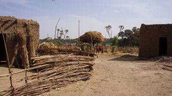 Kanazi Village Niger