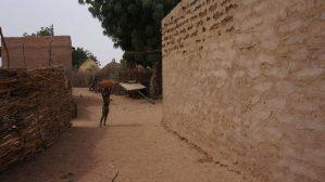 Kouré Niger