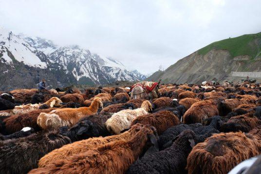 Scenes of Tajikistan