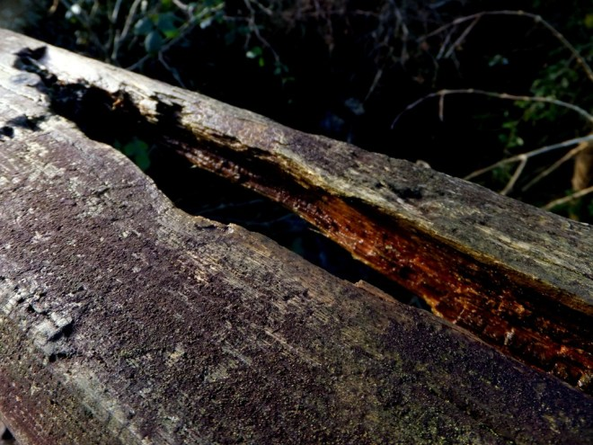 Decomposing wooden bridge over the river at West Challacombe