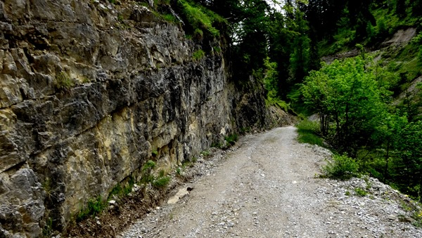 Up to the Oberbrunalm