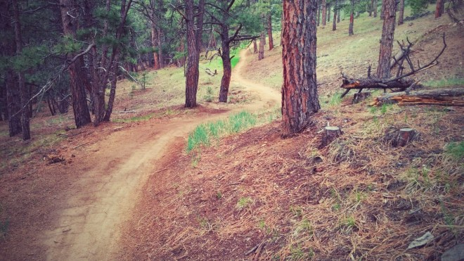 The Betasso Preserve Trails are in great condition