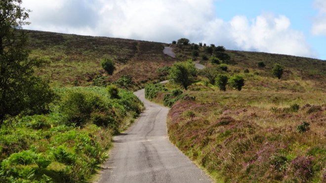 Towards the top of Dunkery Beacon. Most climbs on Exmoor are devoid of switchbacks; instead, small roads wind directly up the barren faces of the hills