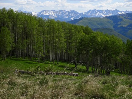 May: Meadow Mountain and the Gore Range