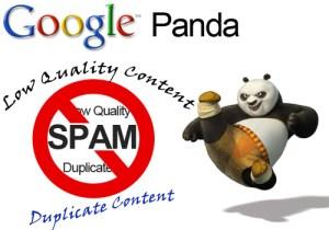 Google Panda Fighting