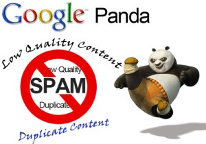 Google Panda Fighting