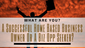 A Successful Home Based Business Owner Or A Biz Opp Seeker