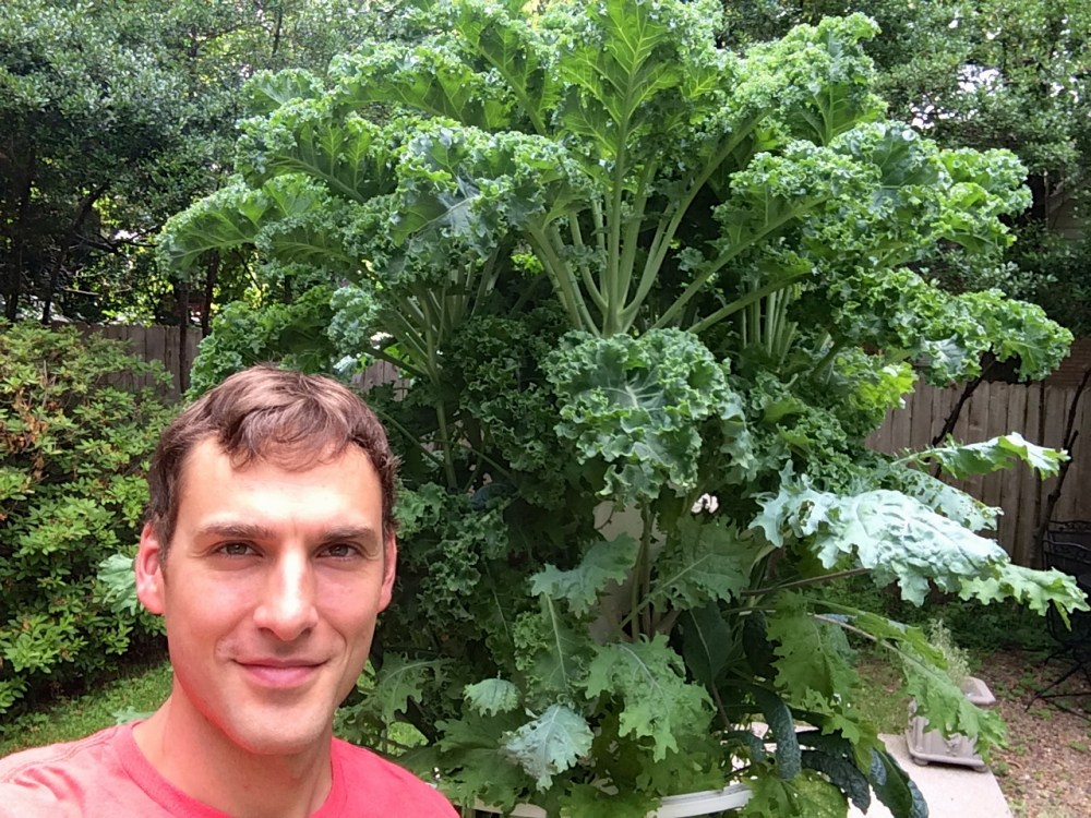 How to grow huge produce fast with a Tower Garden