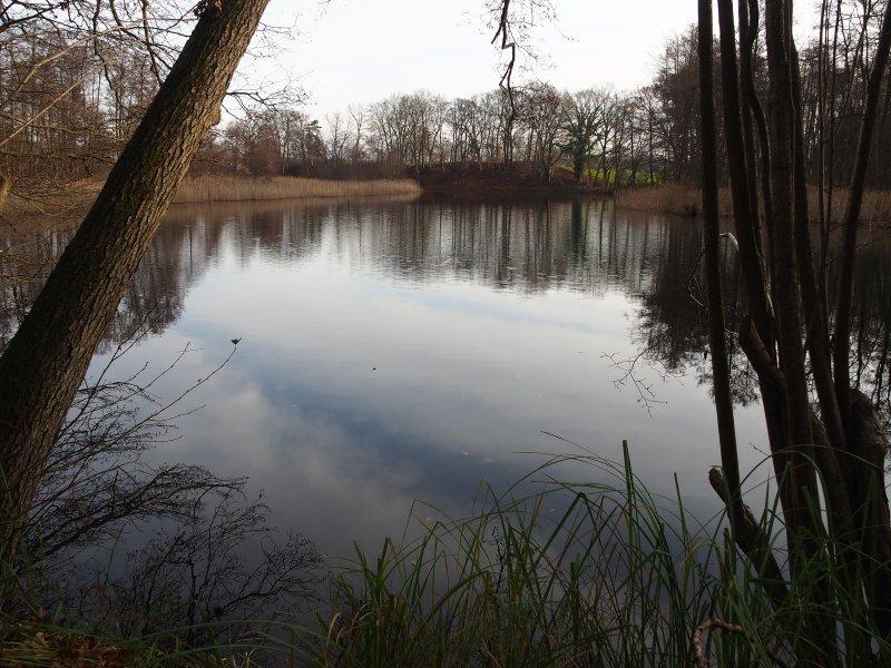 Most Peaceful And Beautiful Hike In Brandenburg Dannenwalde To Furstenberg