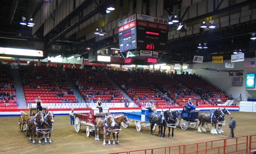 Royal Manitoba Winter Fair - Brandon