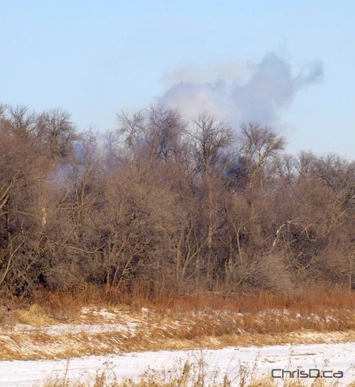 King's Park Controlled Burns