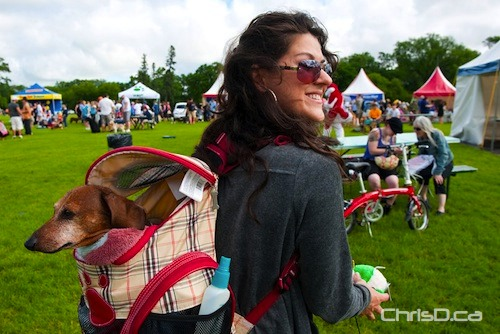 A woman carries her pooch on her back in this 2010 Paws in Motion file photo. (TED GRANT / CHRISD.CA)